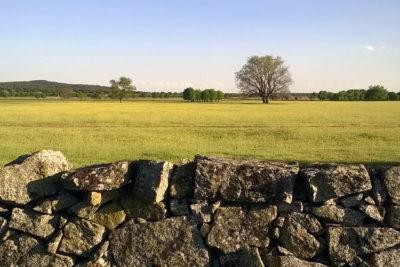 English and hiking: Campillo property
