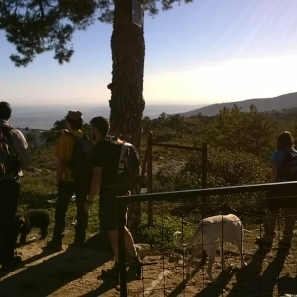 Senderismo con perros por Cabeza Líjar
