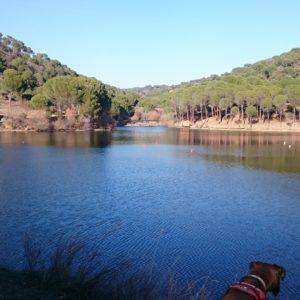 Presa de Picadas, río Alberche