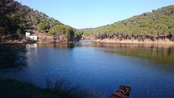 Senderismo por la Presa de Picadas, (río Alberche) con El Caminante y su Sombra