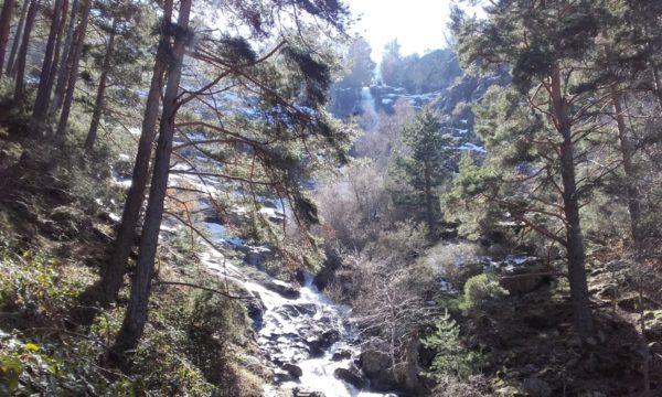 Senderismo a la Chorrera Mojonavalle y al Abedular de Canencia