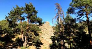 Acompáñanos en esta bonita ruta por las umbrías de San Rafael, una zona bastante desconocida por los senderistas madrileños, ideal para realizar en los meses de verano, cuando aprieta el calor, porque toda ella transcurre a la sombra de los pinos. Saldremos desde San Rafael hacia el sur, hacia la montaña que tanta sombra le proporciona, la afamada Cueva Valiente. Recorreremos su falda de oeste a este pasando por dos