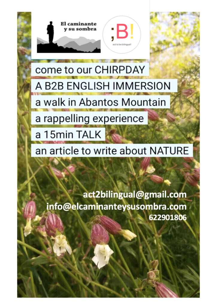 B2B - English inmersion