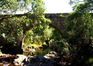 De Lozoya a Gargantilla con El Caminante y sy Sombra