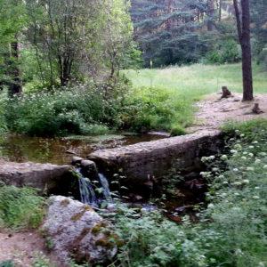 Senderismo por La Fuenfría (Cercedilla) con El Caminante y su Sombra