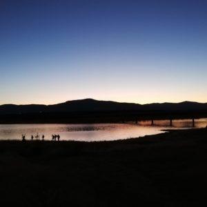 Senderismo desde Colmenarejo al Embalse de Valmayor con El Caminante y su Sombra