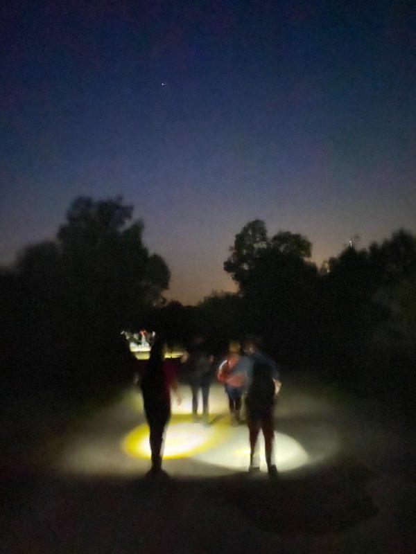 Senderismo Nocturno por San Martín de Valdeiglesias con El Caminante y su Sombra